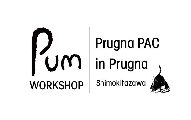 Pum_Logo-01